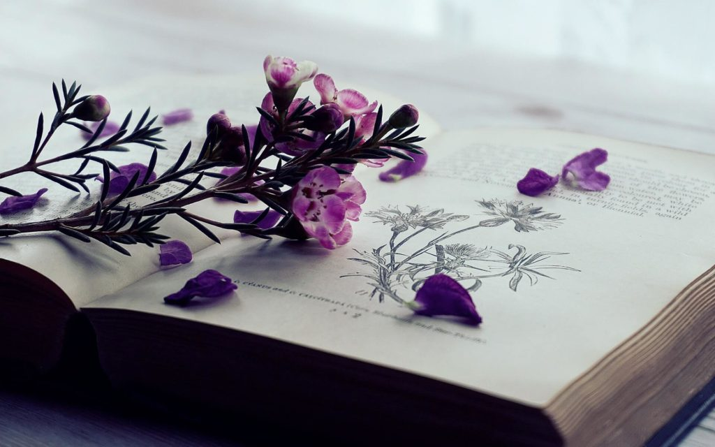 Reading a book is one of the best ways to relax and slow down after a long day.
